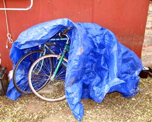 Why you need a bike shed